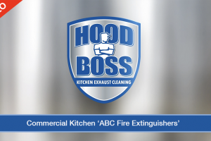 Commercial Kitchen ABC Fire Extinguisher (Video)